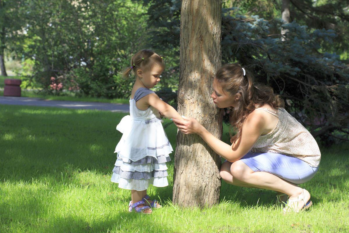 100 Fantastique Suggestions Se Débarrasser Des Moustiques Dans Le Jardin